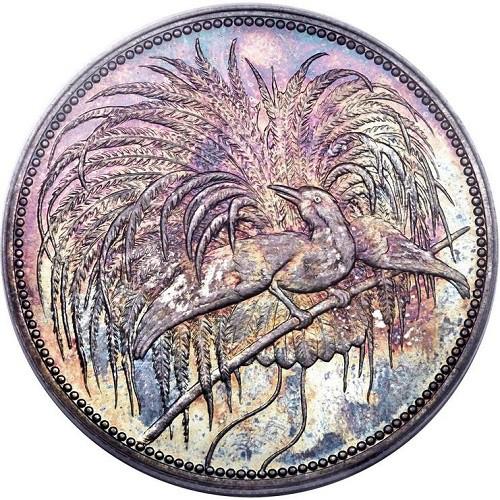 Nueva Guinea Alemana